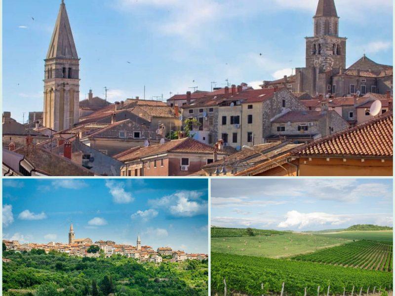 Buje – mjesto plodnih vinograda i maslinika